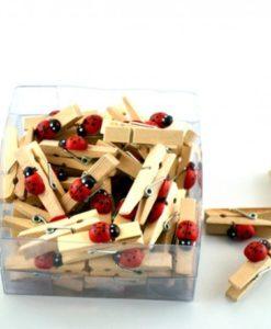 Mollette in legno con coccinella
