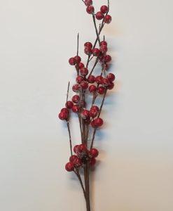 ramo con bacche decorazione natale