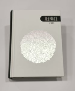 teenace-diario-12-mesi-seven